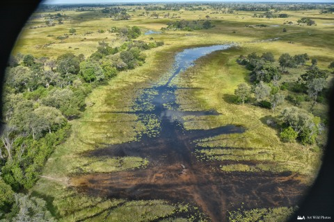 Paths and river of Botswana